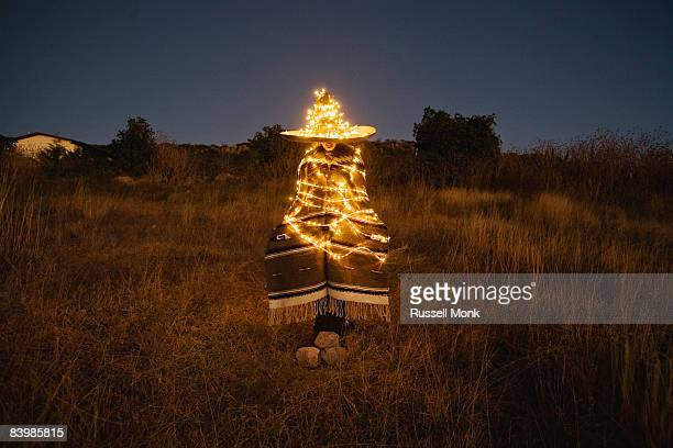 mexican xmas tree - mexican christmas stock pictures, royalty-free photos & images