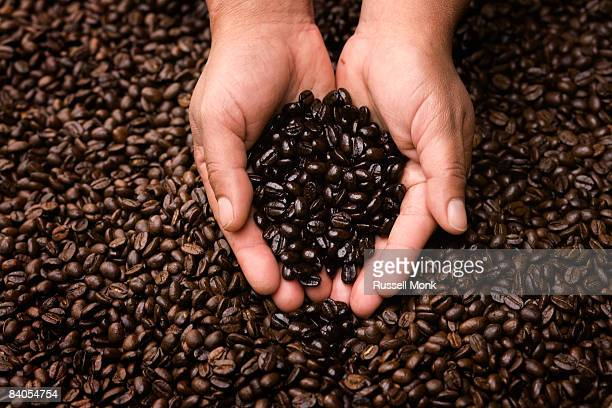 HANDS HOLDING COFFEE BEANS