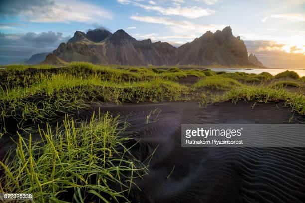ICELAND SUMMER LANDSCAPE