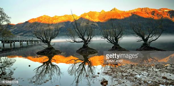 WILLOWS OF GLENORCHY