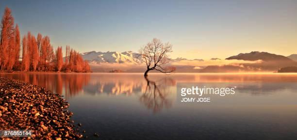 lake wanaka - lago wanaka - fotografias e filmes do acervo