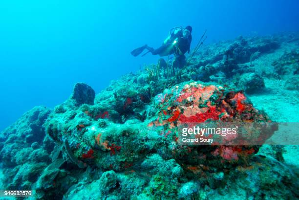 old french anchor on the sea floor with a diver - archaeology stock pictures, royalty-free photos & images