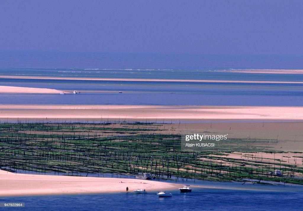 Banc D Arguin Bassin D Arcachon Cote Atlantique Gironde France