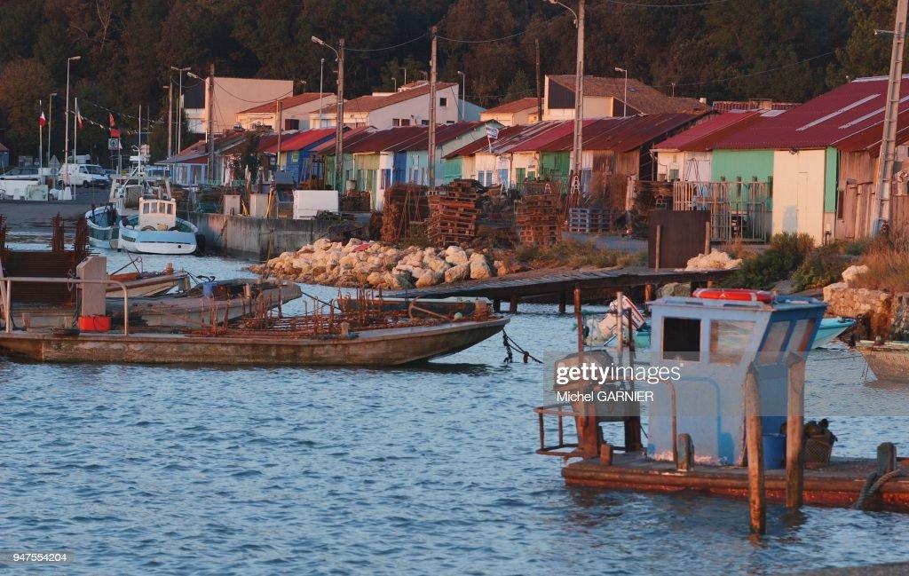 Port Ostreicole De Saint Trojan Ile D Oleron France Pictures