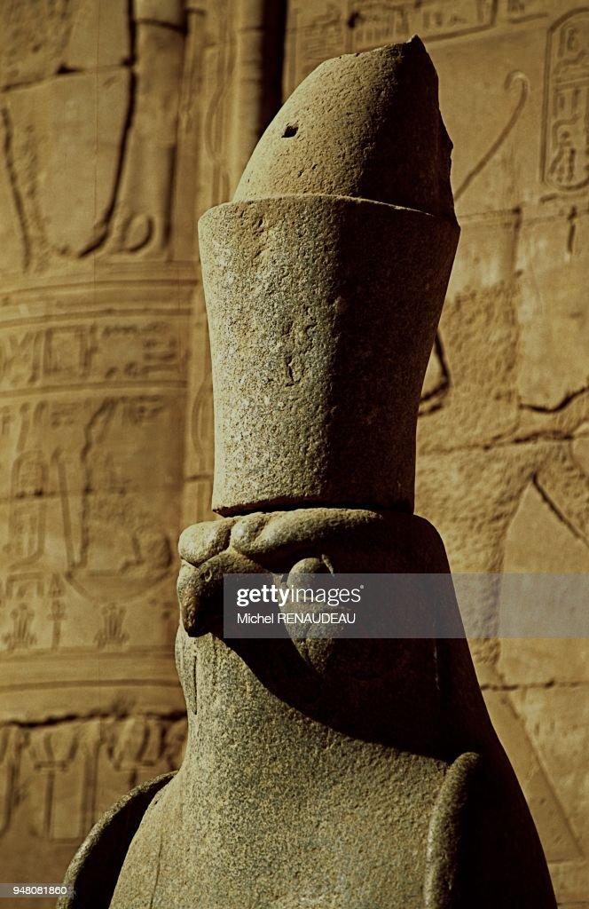 TETE DE FAUCON REORESENTANT LE DIEU HORUS , EGYPTE, VALLEE DU NIL, LE TEMPLE D'EDFOU, ( TEMPLE D'HORUS) , HAUTE EGYPTE : News Photo
