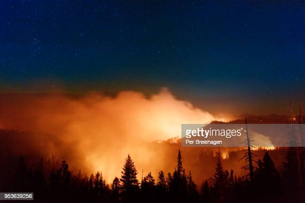 forest fire by glacier point_yosemite - california wildfire stock pictures, royalty-free photos & images
