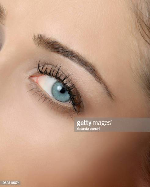 close up of a blue natural eye - eye liner stock photos and pictures