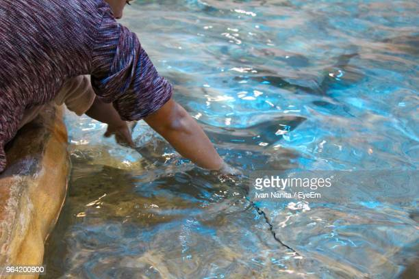 Man Catching Fish In Water