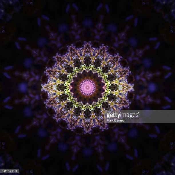 marydala-014 - radial symmetry stock pictures, royalty-free photos & images