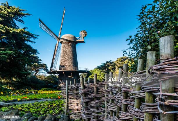 ca-san francisco-golden gate park-dutch windmill - sanduíche stock pictures, royalty-free photos & images