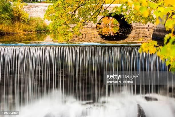 me-springvale - brook mitchell bildbanksfoton och bilder
