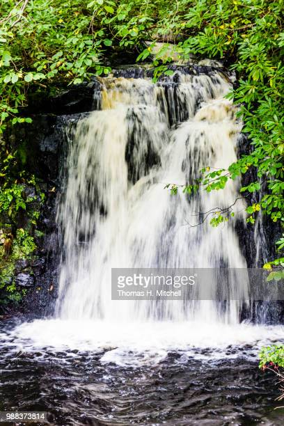 scotland-isle of skye-dunvegan castle and gardens - brook mitchell stock pictures, royalty-free photos & images