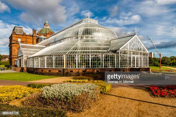 scotland-glasgow-people's palace - botanical garden stock pictures, royalty-free photos & images