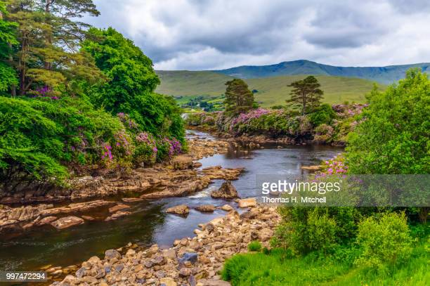 republic of ireland-county mayo-aasleagh falls - brook mitchell stock pictures, royalty-free photos & images