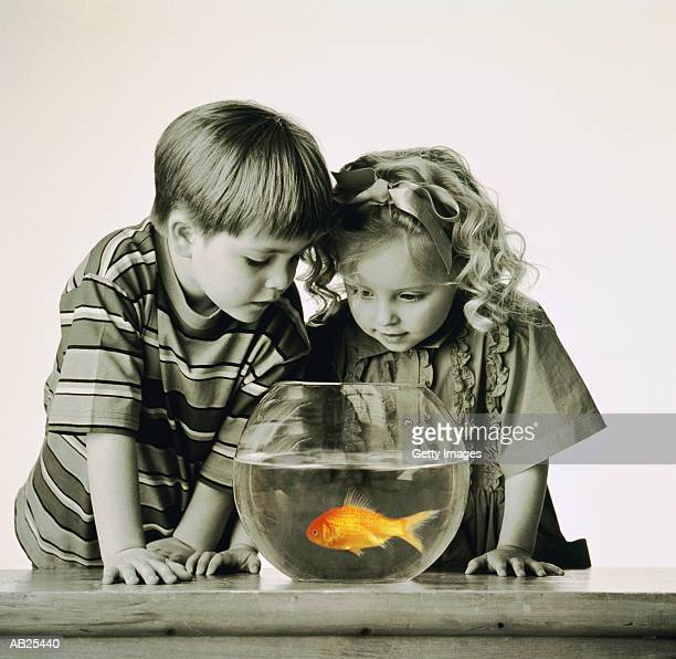 BOY AND GIRL LOOKING AT GOLDFISH INBOWL