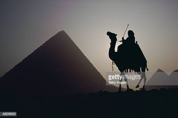 GREAT PYRAMID AND CAMEL, GIZA, EGYPT