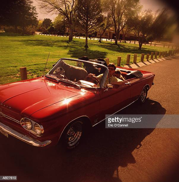 MAN DRIVING WITH HIS PETS IN A RED CONVERTIBLE CAR
