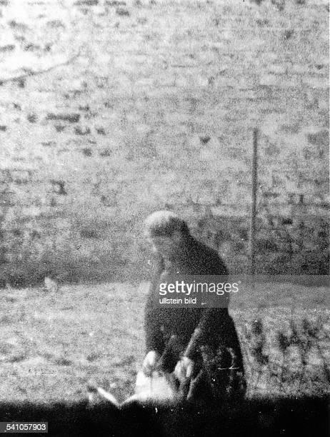 Architekt D der ehem Reichsminister für Rüstung undKriegsproduktion bei Arbeiten im Gartendes KriegsverbrecherGefängnisses inBerlin Spandau etwa 1951