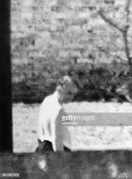 Architekt D der ehem Reichsminister für Rüstung undKriegsproduktion im Garten desKriegsverbrecherGefängnisses in BerlinSpandau etwa 1951