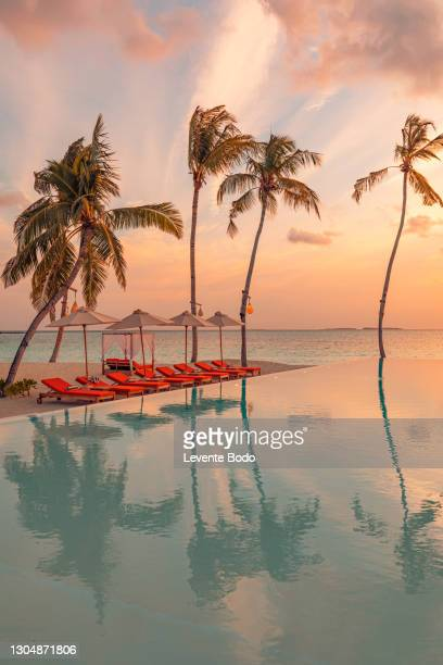 03.august.2019 - maldives, dhaalu atoll, iru veli island: luxurious beach resort with sunset swimming pool reflection and beach chairs or loungers under umbrellas with palm trees and colorful twilight sky. summer island travel and vacation scenic - tourist resort stock pictures, royalty-free photos & images
