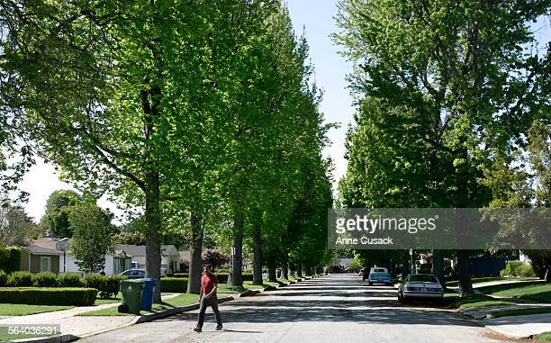 Sherman OaksThe tree line street of Columbus Avenue The Magnoolia Woods neighborhood of Sherman Oaks is filled with busy home–improvement bees The...