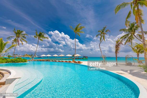 05.august.2019 - maldives, dhaalu atoll, iru veli island: luxurious beach resort with swimming pool and beach chairs or loungers under umbrellas with palm trees and blue sky. summer island travel and vacation scenic - tourist resort stock pictures, royalty-free photos & images