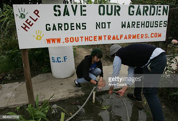 South Los Angeles. Volunteer L to R Casondra Mojica and Guillermo Tejeda wash their hands beneath a sign to save the urban farms. Fourteen acres of...