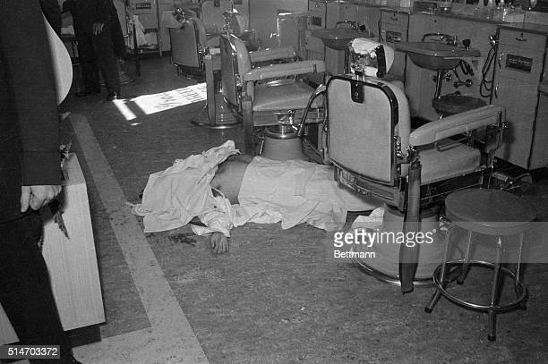 New York NY The covered body of racketeer Albert Anastasia former 'Lord High Executioner' for Brooklyn's infamous Murder Incorporated gang lies on...