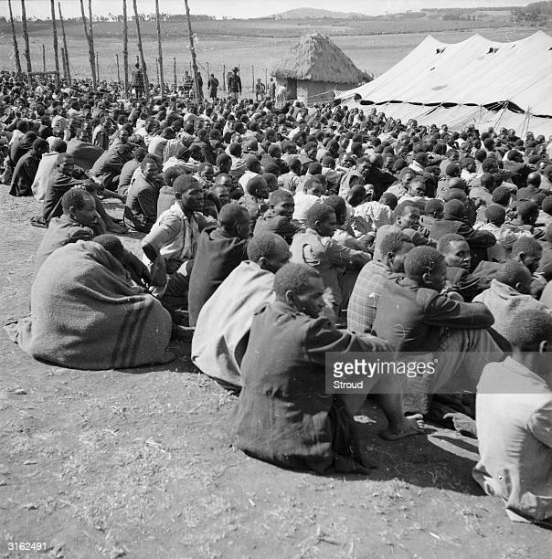 Hundreds of Mau Mau prisoners being held in a compound in the uplands of Kenya