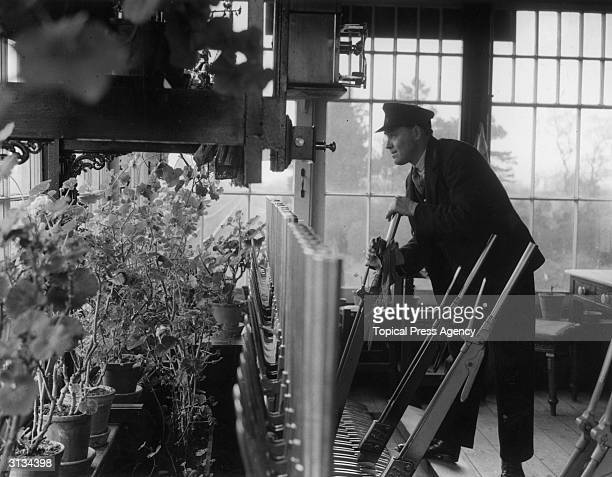 S E Culpin a signalman at Wolverton Norfolk has filled the signal box with geraniums
