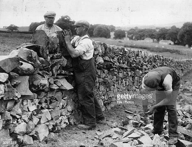 Mr McLaughlan of Dalry is a master of the art of dry stone dyke building and is the last member of his family to carry on the trade Unfortunately dry...