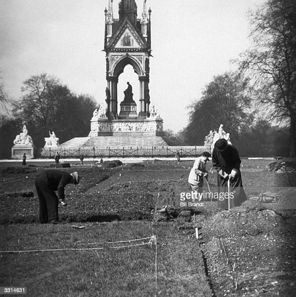 Allotments in Kensington Gardens with the Albert Memorial in the background Original Publication Picture Post 722 Spring In The Park pub 1941