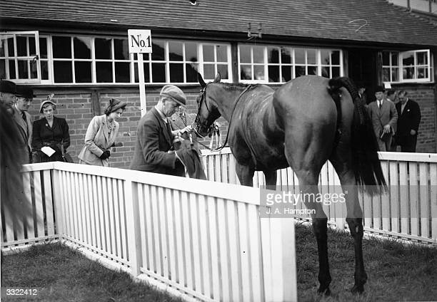 Princess Elizabeth inspects her steeplechaser Monaveen which she owns in partnership with her mother after its first win wearing her colours at...