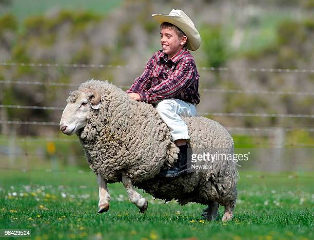 Year-old James Fenby from Macclesfield rides a ram at the farm of Paul Macphail in Welshpool, Victoria, during the 13th Annual State Duck, Sheep and...