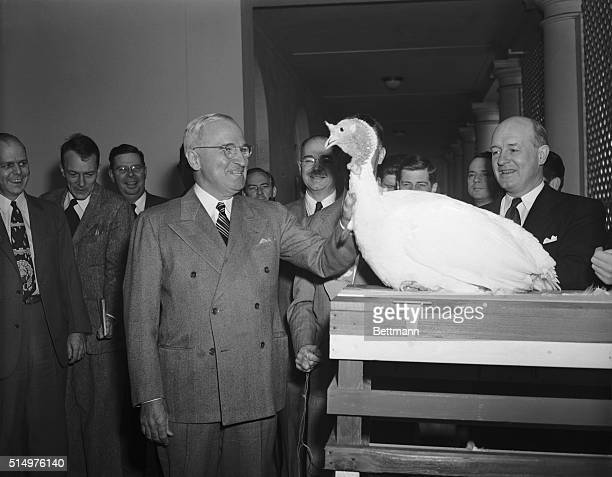 Washington DC President Truman is shown as he received the first of a number of turkeys which are presented to him annually for Thanksgiving The...