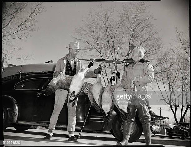 1/12/1950Las Vegas NV Rulon Larsen and Bob Russell proudly display their day's shooting as these fat Canada geese hang from one of the hunter's...