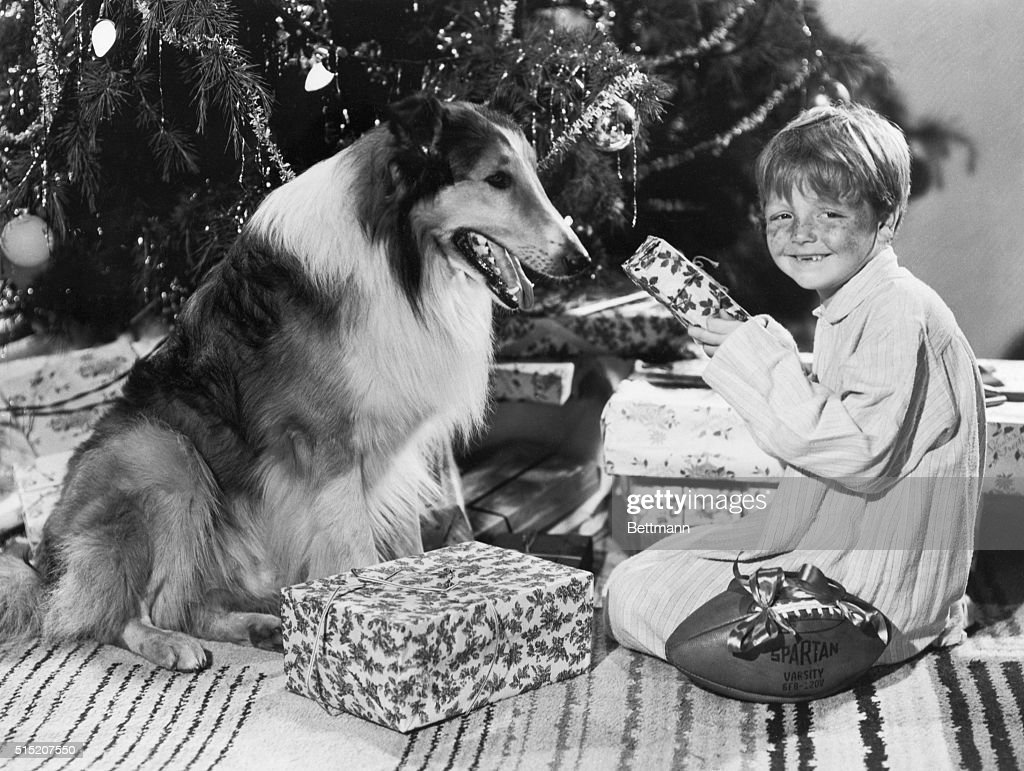 Hollywood, CA- As the happy season approaches, child actor
