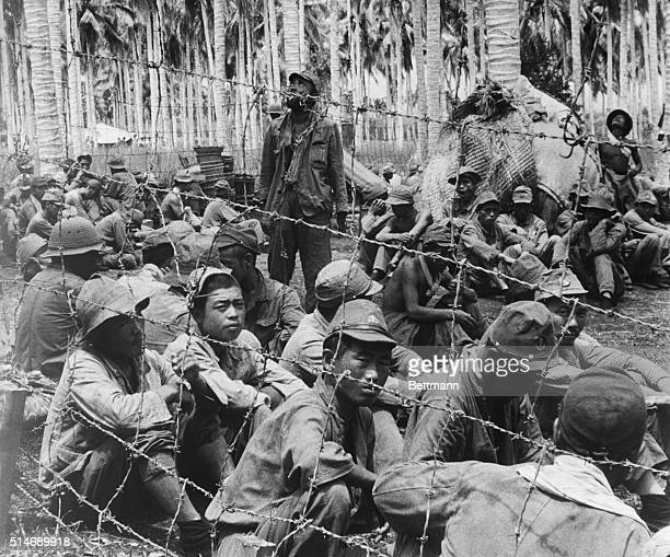 Solomon Islands: Axis propagandists have given out at various times that the U.S. Marines are taking no prisoners, or that the Japs are so gallant...