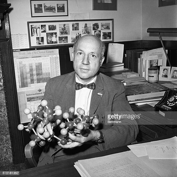 11/9/1961Berkeley CA Holding a model of the sucrose molecule used in his current study of sugar structure Dr Melvin Calvin 50 carries out research in...