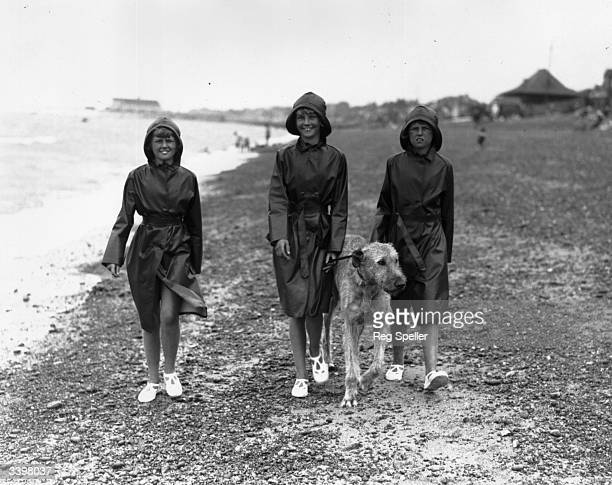 Triplets walking an Irish Wolfhound dog on a beach at Herne Bay Kent