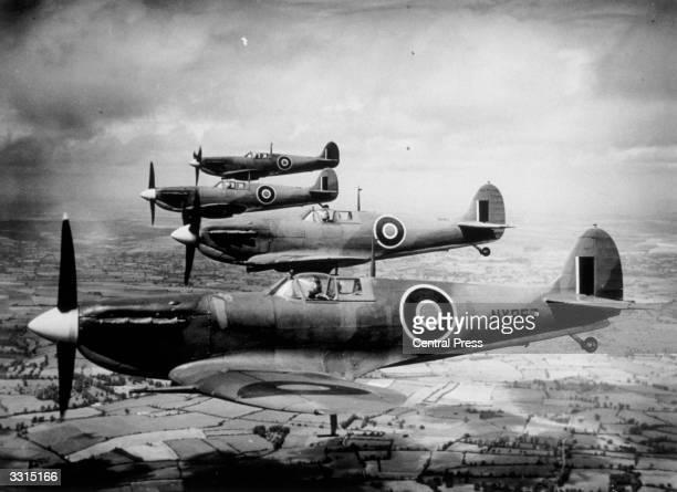 Four naval Seafire Spitfires flying.