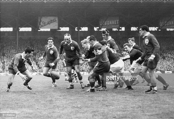 French and Scottish Rugby Union players chasing after the ball during a game at Colombes