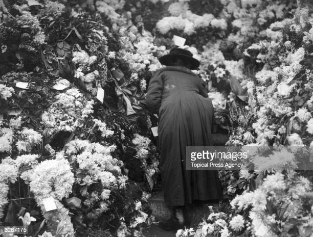 A woman placing flowers at the Cenotaph in memory of the dead of the Great War