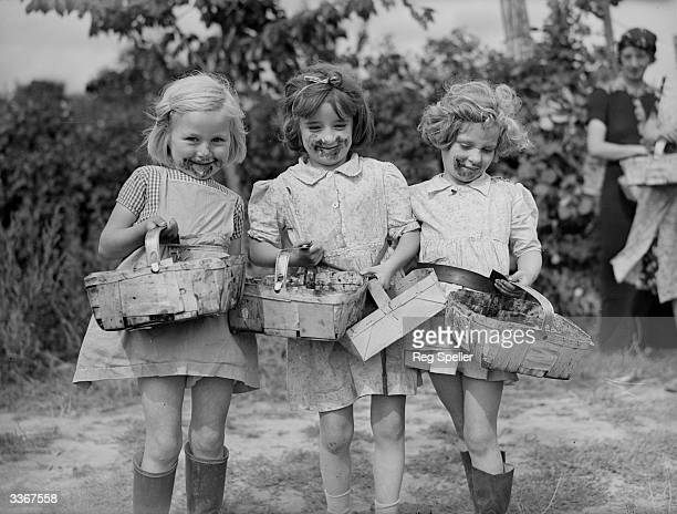 Three young blackberry pickers in the Paddock Wood area of Kent who evidently sampled some of the fruit