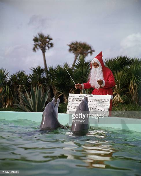 12/00/1957St Augustine FL Porpoises sing Jingle Bells at marineland St Augustine FLUPI