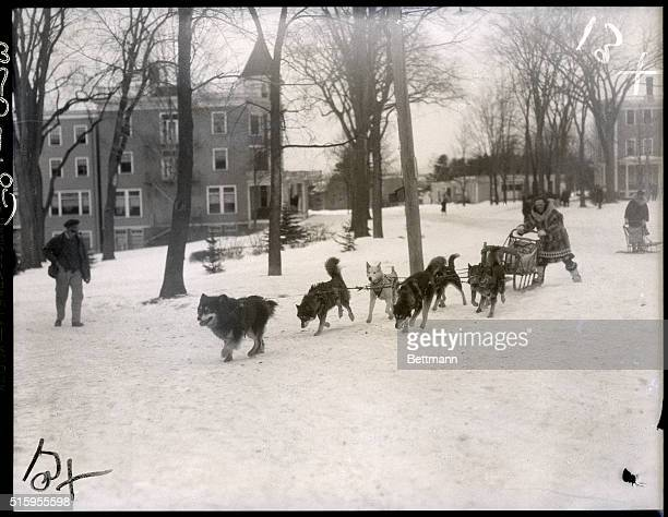 1/29/1927Poland Springs ME Photo shows Leonhard Seppala famed Alsaskan dog racer as he brought his team led by Billikin and Togo into Poland Springs...