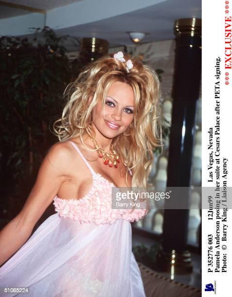 P 352776 003 12Jun99 Las Vegas Nevada Pamela Anderson Posing In Her Suite At Cesars Palace After Peta Signing