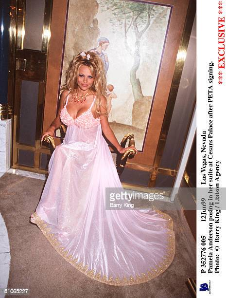 P 352776 006 12Jun99 Las Vegas Nevada Pamela Anderson Posing In Her Suite At Cesars Palace After Peta Signing