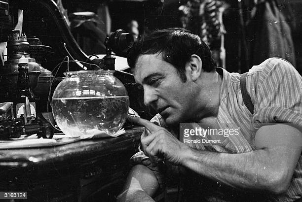Harry H Corbett star of the 70s television show 'Steptoe and Son' peers into a goldfish bowl on set