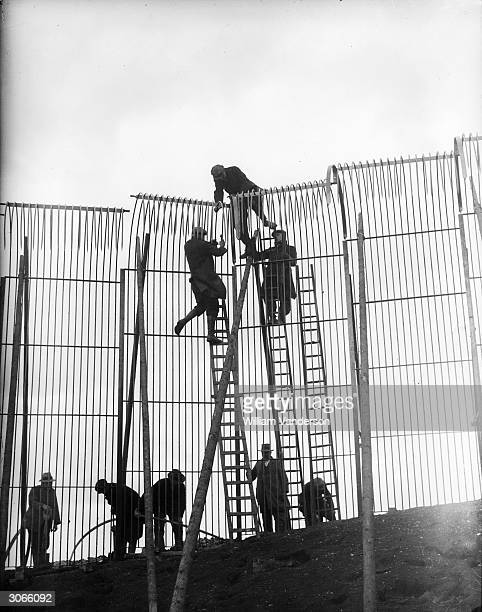 Workers constructing a 17-foot-high fence around the new dell for the tigers at Whipsnade Zoological Park, Bedfordshire, in preparation for the...